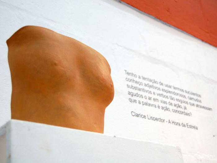 Tarsila - detalhe da exposição